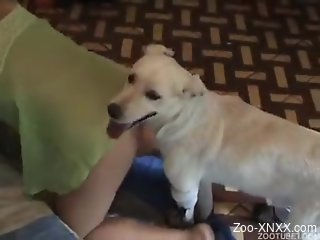 Trained white dog fucks my hot wife in doggy pose