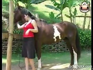 Busty brunette with huge boobies is enjoying farm bestiality w...