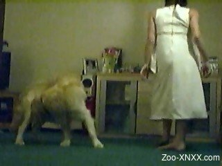 Masked MILF and Golden Retriever try to make love on floor