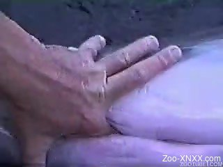 Zoophile man fucks turned-on dolphin with finger